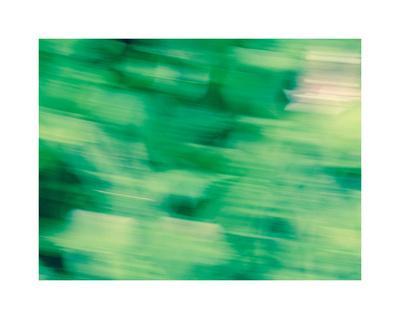 https://imgc.artprintimages.com/img/print/flora-motion_u-l-f8vfvt0.jpg?p=0