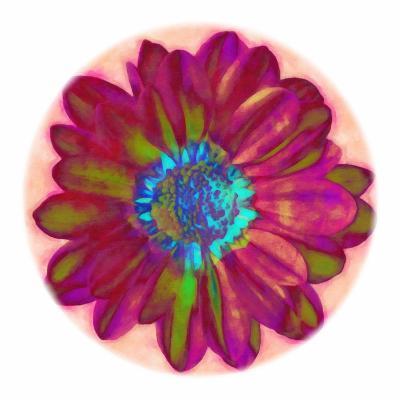 Flora Orb II-Ricki Mountain-Art Print
