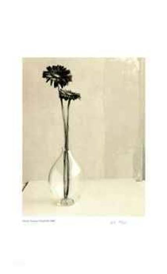 Floral # 10-Adriene Veninger-Collectable Print