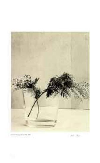 Floral #11-Adriene Veninger-Limited Edition