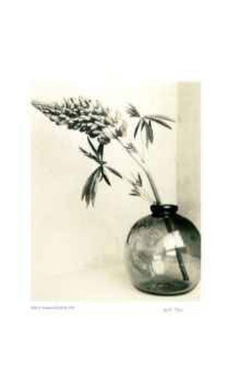 Floral #1-Adriene Veninger-Limited Edition