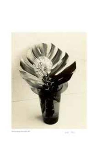 Floral #8-Adriene Veninger-Limited Edition