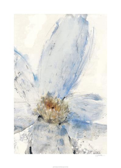 Floral Blue I-Tim O'toole-Limited Edition