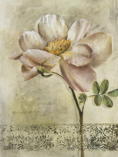 Floral Blush IV-Carney-Giclee Print