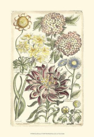 https://imgc.artprintimages.com/img/print/floral-bounty-i_u-l-f31u4c0.jpg?p=0