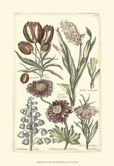 Floral Bounty II--Art Print