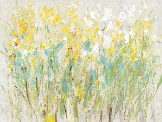 Floral Cluster II-Tim O'toole-Art Print
