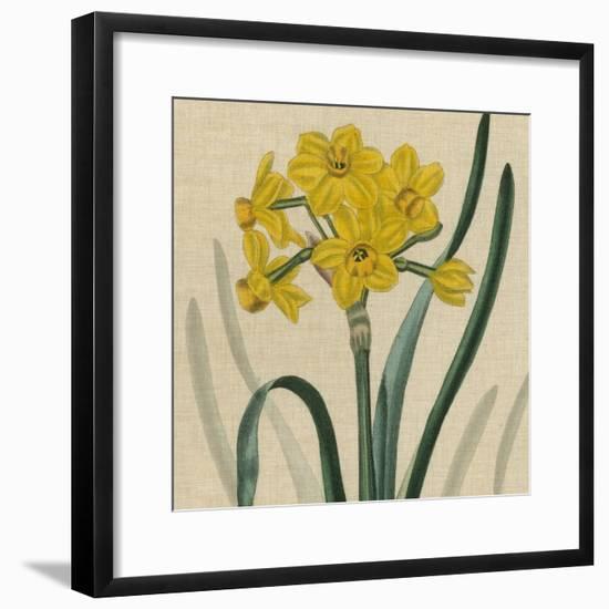 Floral Delight III-Vision Studio-Framed Art Print