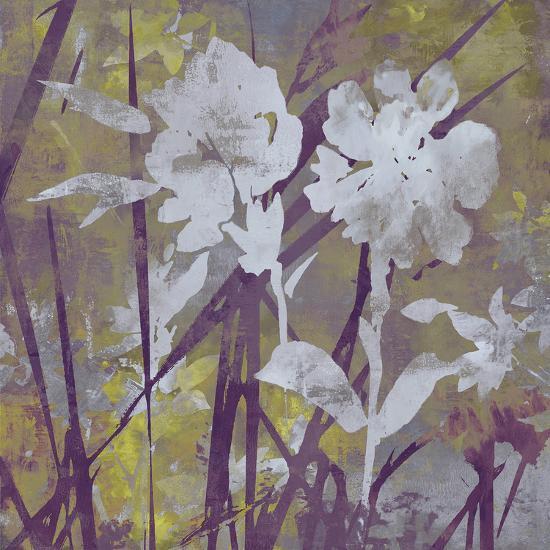 Floral Dusk II-Paul Duncan-Giclee Print
