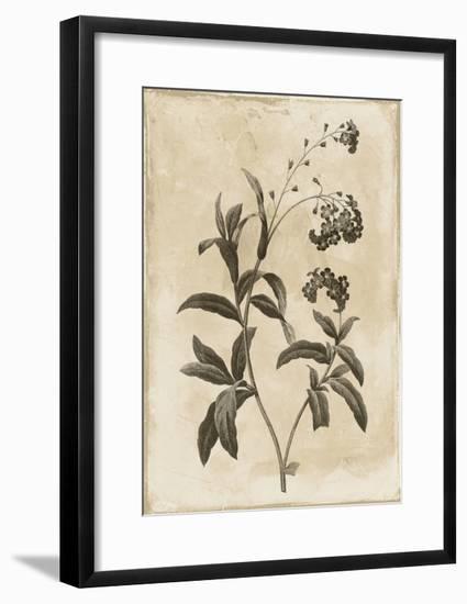 Floral Earthtone Four-Jace Grey-Framed Art Print