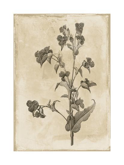 Floral Earthtone Three-Jace Grey-Art Print