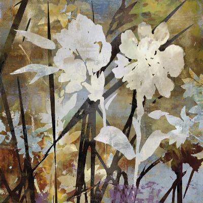Floral Eclipse II-Paul Duncan-Art Print