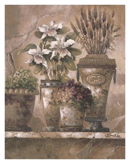 Floral Elegance I-James Lee-Art Print