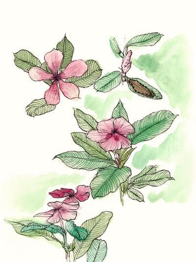 Floral Field Notes VI-Melissa Wang-Art Print