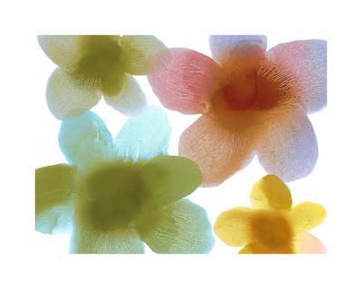 https://imgc.artprintimages.com/img/print/floral-friends-i_u-l-f8vic00.jpg?p=0