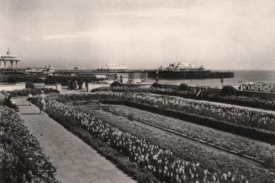 Floral Gardens and the West Pier, Brighton, Sussex, 1938--Giclee Print