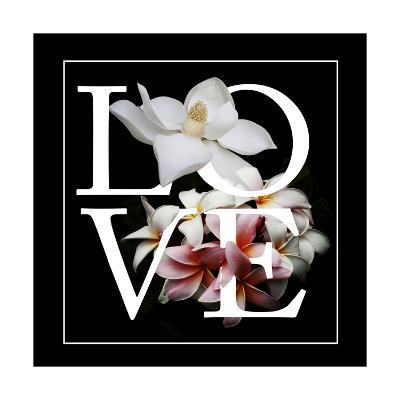 Floral Graphic I-Melissa Wang-Art Print
