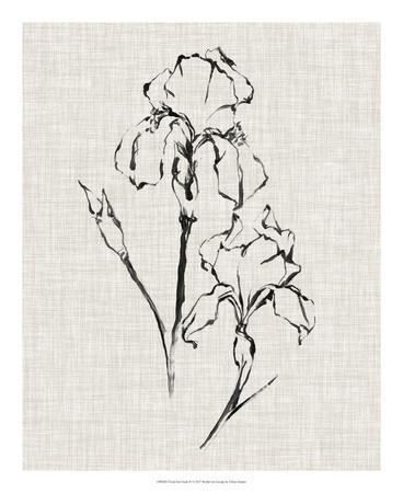 https://imgc.artprintimages.com/img/print/floral-ink-study-ii_u-l-f97ppz0.jpg?p=0