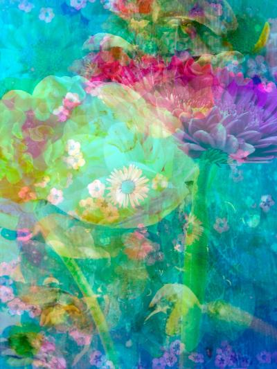 Floral Montage, Multicolored-Alaya Gadeh-Photographic Print