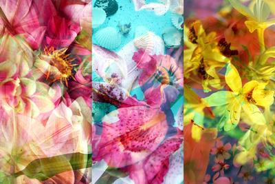https://imgc.artprintimages.com/img/print/floral-montage_u-l-q11wjj60.jpg?p=0