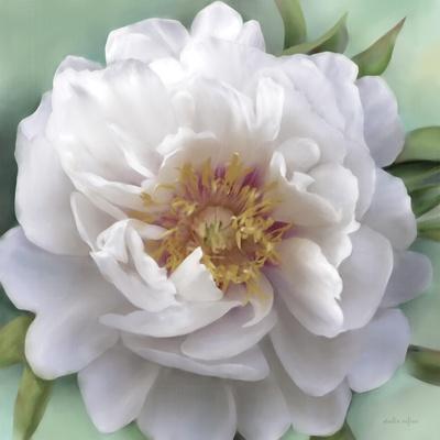 https://imgc.artprintimages.com/img/print/floral-muse_u-l-q12vxdb0.jpg?p=0