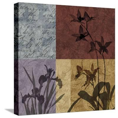 Floral Refrain II-Keith Mallett-Stretched Canvas Print