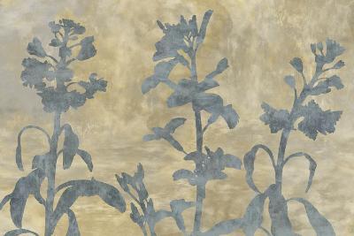 Floral Shadow-Tania Bello-Art Print