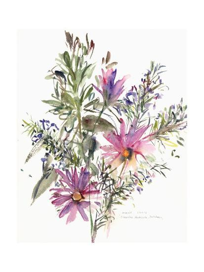 Floral, South African Daisies and Lavander, 2004-Claudia Hutchins-Puechavy-Giclee Print