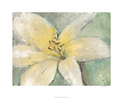 https://imgc.artprintimages.com/img/print/floral-spirit-iii_u-l-f804co0.jpg?p=0