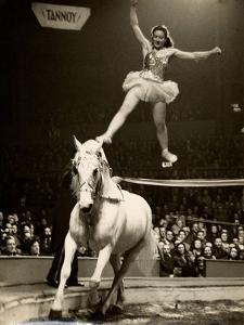Florence Stephenson at Bertram Mills' Circus, c.1948-1949