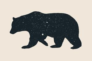 Bear by Florent Bodart