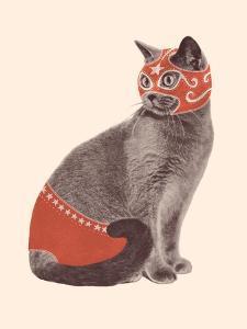 Cat Wrestler by Florent Bodart