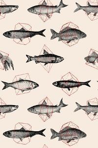 Fishes in Geometrics by Florent Bodart