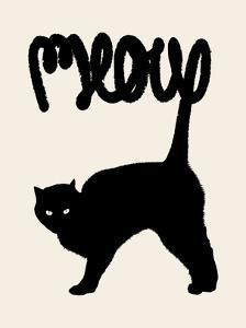 Meow by Florent Bodart