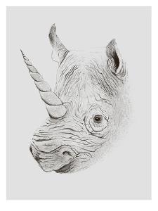 Rhinoplasty by Florent Bodart