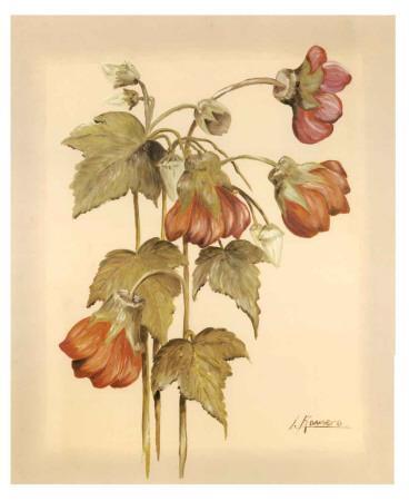 https://imgc.artprintimages.com/img/print/flores-colgantes-iv_u-l-f4y2uk0.jpg?p=0