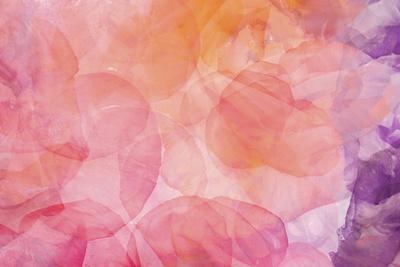 https://imgc.artprintimages.com/img/print/flores-compuestas-1_u-l-q10pno20.jpg?p=0