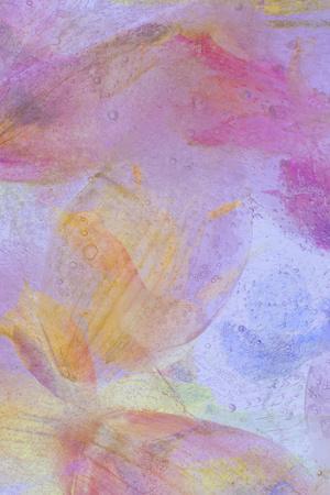 https://imgc.artprintimages.com/img/print/flores-en-hielo-compo-3_u-l-q10pnnm0.jpg?p=0