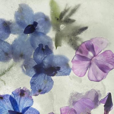 Flores en Hielo I-Moises Levy-Giclee Print