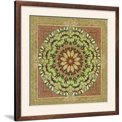 Floress Mandala IV-Catherine Kohnke-Framed Photographic Print