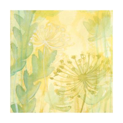 Florid Garden I-Renee W^ Stramel-Art Print