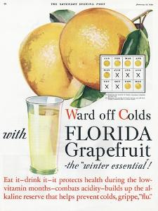Florida Grapefruit, Colds Flu Fruit, USA, 1920