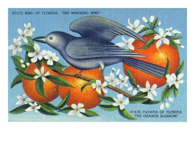 Florida - Mockingbird and Orange Blossoms, State Bird and Flower-Lantern Press-Art Print