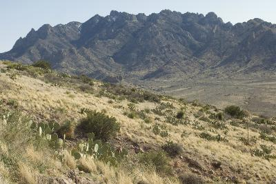 Florida Mountains of the Mexico Borderland Seen From Rockhound State Park, New Mexico--Photographic Print