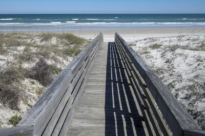 Florida, New Smyrna Beach, Smyrna Dunes Park, Boardwalk-Lisa S^ Engelbrecht-Photographic Print