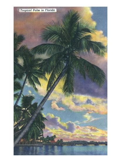 Florida - View of a Palm During Sunset-Lantern Press-Art Print