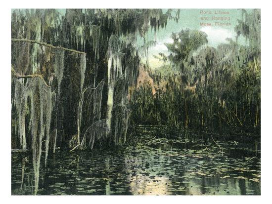 Florida - View of Pond Lilies and Hanging Moss-Lantern Press-Art Print