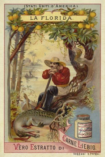 Florida--Giclee Print