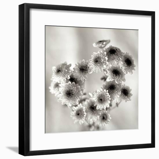 Florison 58-Alan Blaustein-Framed Photographic Print