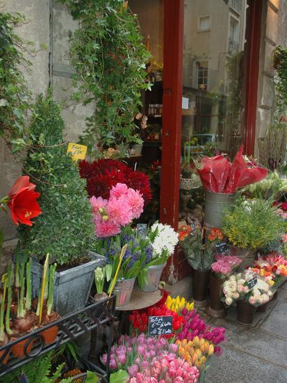 Florist in Ile St. Louis, Paris, France-Lisa S^ Engelbrecht-Photographic Print